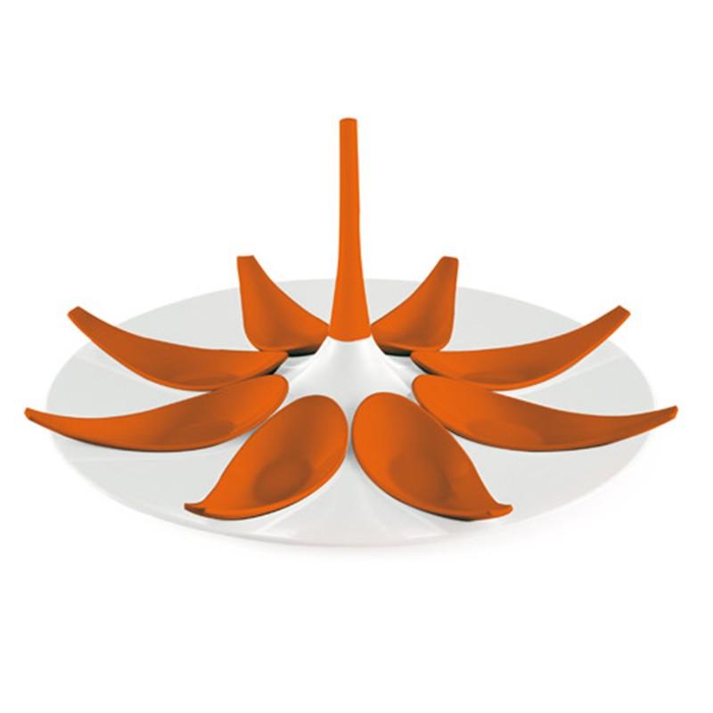 biało - pomarańczowy